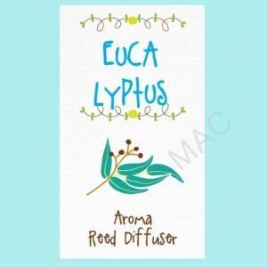 SWEET EUCALYPTUS REED NOTE/ไม่มีสี/Floral Fresh note/ใช้ปรับอากาศให้หอมสดชื่น