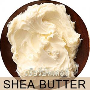 SHEA BUTTER เชียร์บัตเตอร์