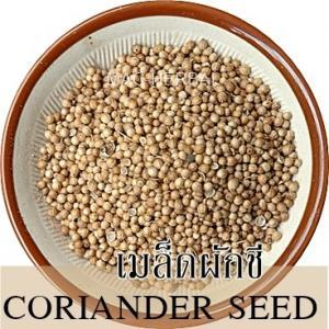 CORANINDER SEED / ลูกผักชี