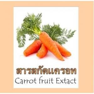 CARROT FRUIT EXTRACT สารสกัดแครอท