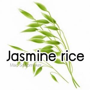 JASMINE RICE / หัวน้ำหอมข้ัาวหอมมะลิ