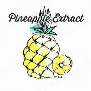 PINEAPPLE EXTRACT สารสกัด สับปะรด
