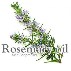 ROSEMARY OIL / น้ำมันหอมระเหยโรสแมรี่