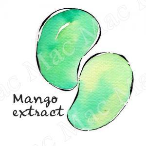 MANGO FRUIT EXTRACT สารสกัดมะม่วง