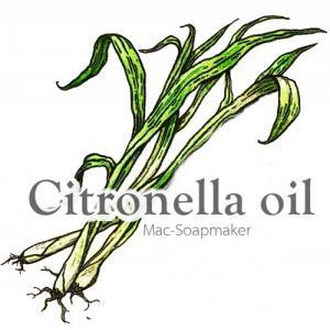 Citronella oil / น้ำมันหอมระเหย ตะไคร้หอม