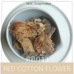 RED COTTON FLOWER ดอกงิ้ว(กลีบดอก+เกสร)