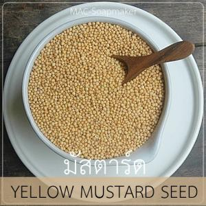 YELLOW MUSTARD SEED มัสตาร์ด