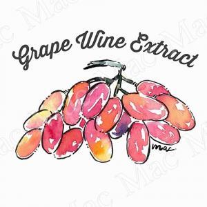 GRAPE WINE EXTRACT สารสกัดองุ่น