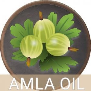 AMLA EXTRACT OIL น้ำมันอามลา