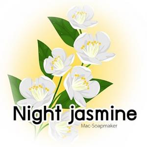 NIGHT JASMINE หัวน้ำหอม ไนท์จัสมินท์ /fruity floral note