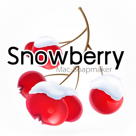 Snowberry / น้ำมันหอม สโนว์เบอรี่