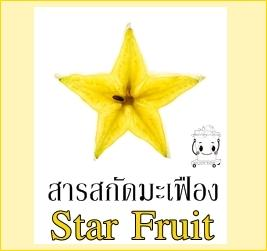 STAR FRUIT EXTRACT สารสกัดมะเฟือง
