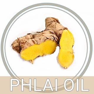 PHALI OIL น้ำมันไพลสกัด