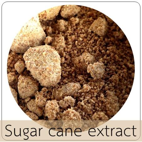 BROWN SUGAR น้ำตาลอ้อย