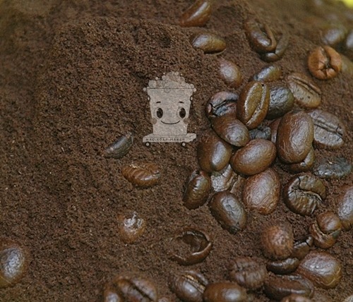 COFFEE GROUND กากกาแฟ/ไม่มีกลิ่น