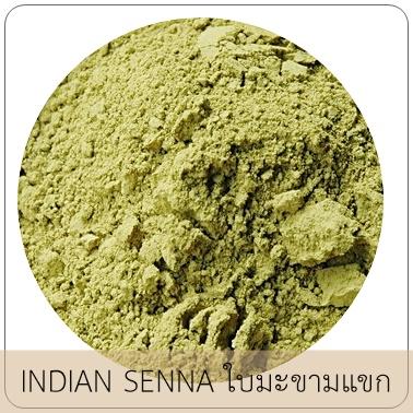 INDIAN SENNA ผงใบมะขามแขก
