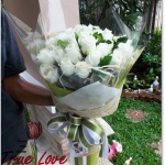 V009 : Anyway (33 roses)