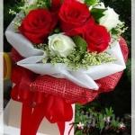 V013 : Dream (7 roses)