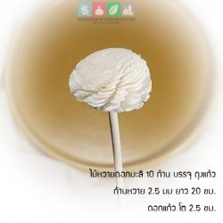 ไม้หวายดอกมะลิ 2.5 ซม.