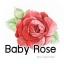 Baby Rose /หัวน้ำหอมกุหลาบหนู